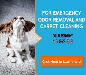 Tips | Carpet Cleaning Tiburon, CA