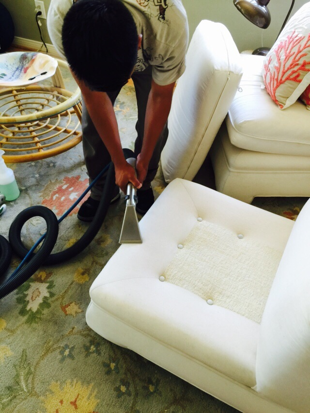 Upholstery Cleaning in Tiburon